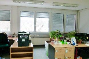 Bürofläche - 292 m² - Fahrstuhl behindertengerecht -verkehrsgünstige Lage - Maxglan/Flughafennähe