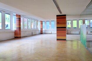 Großraumbüro - 498 m2 - Nähe Rochusmarkt