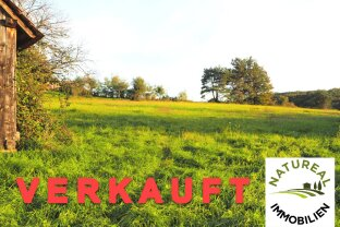 Bastler / Renovierer / Sanierer aufgepasst - Bauernhaus im Südburgenland mit 1,3 Hektar Wiese und Bauland zu verkaufen!
