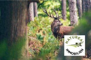 Sie wollen verkaufen - Wir suchen dringend Eigenjagden Wälder und landwirtschaftliche Liegenschaften!