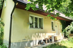 OPEN HOUSE: altes renovierungsbedürfigtes Haus in Einzellage umgeben von Wald im Kurort Bad Schönau