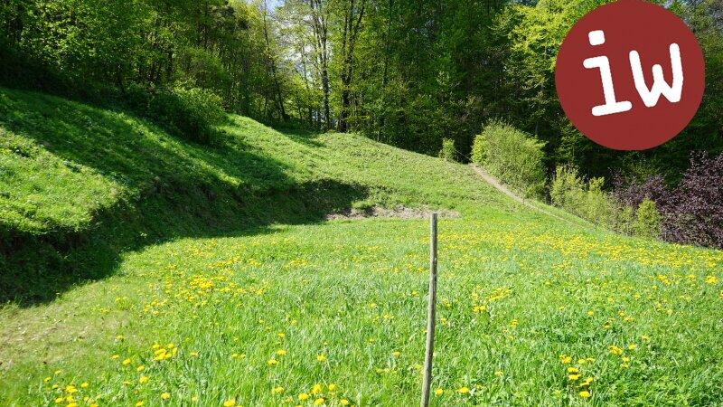 Baugrund in herrlicher Grün-Ruhelage Objekt_371 Bild_57