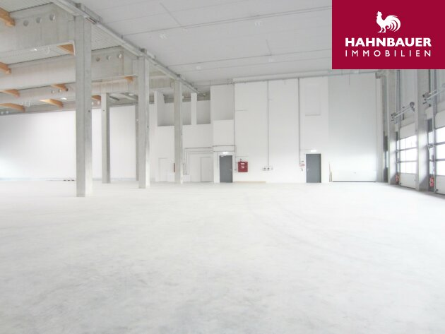 Storage in Warehouse 1600 sqm south of Vienna in Wr. Neudorf Vösendorf