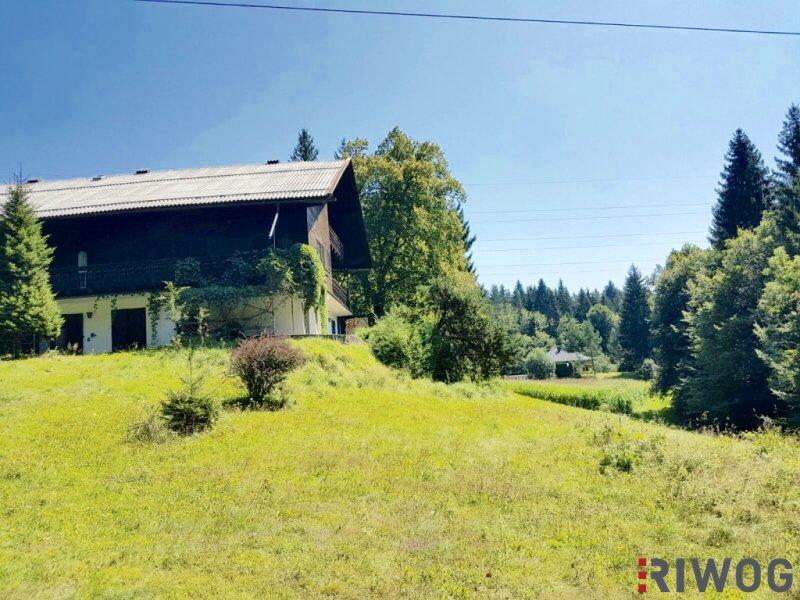 Idyllisches Haus am Forstsee