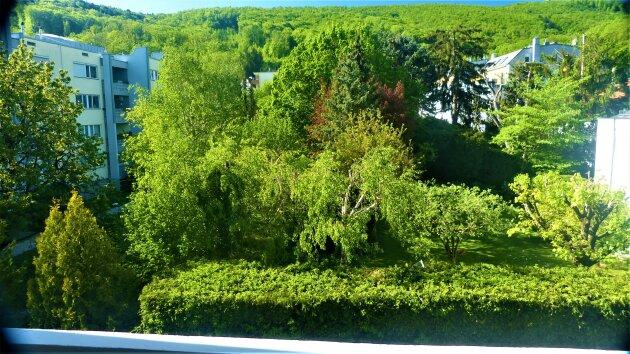 Foto von Geräumige Loggia-Wohnung mit Grünblick