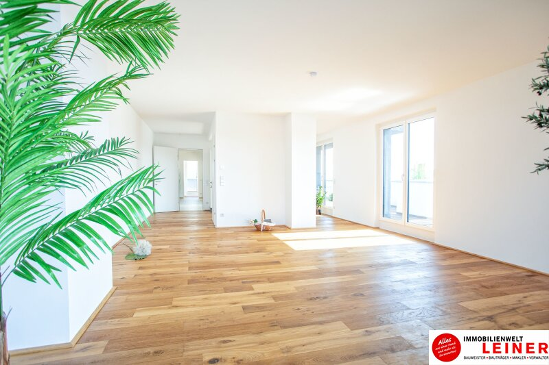 100 m² PENTHOUSE *UNBEFRISTET*BARRIEREFREI*Schwechat - 3 Zimmer Penthouse im Erstbezug mit 54 m² großer südseitiger Terrasse Objekt_9404 Bild_423