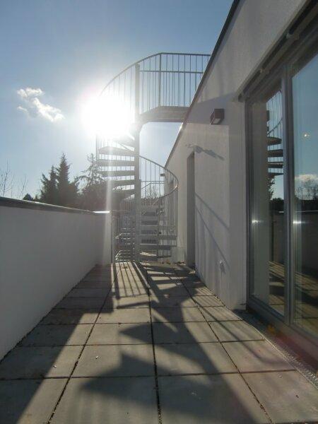 Dachterrasse. Faszinierend das dritte Zimmer im Freien /  / 1230Wien / Bild 6